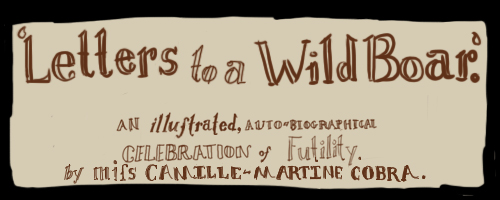 Letters to a Wild Boar